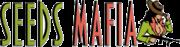 logo SeedsMafia - Феминизирани семена канабис